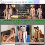 Badpuppy 사용자 이름