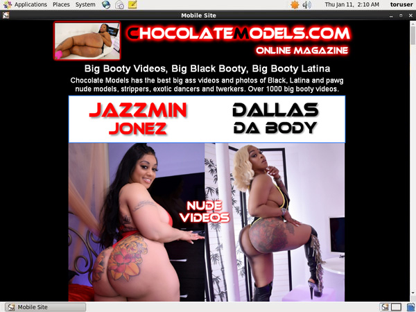 Chocolate Models Allow Paypal