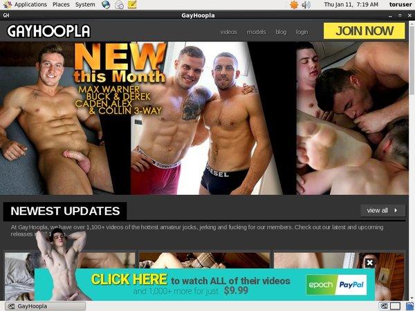 Gay Hoopla Free Username