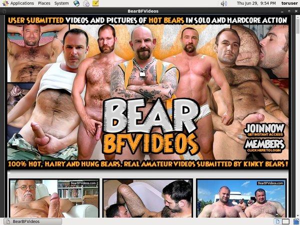 Trial Account Bear BF Videos