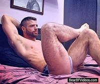 Free Bear BF Videos Account s1