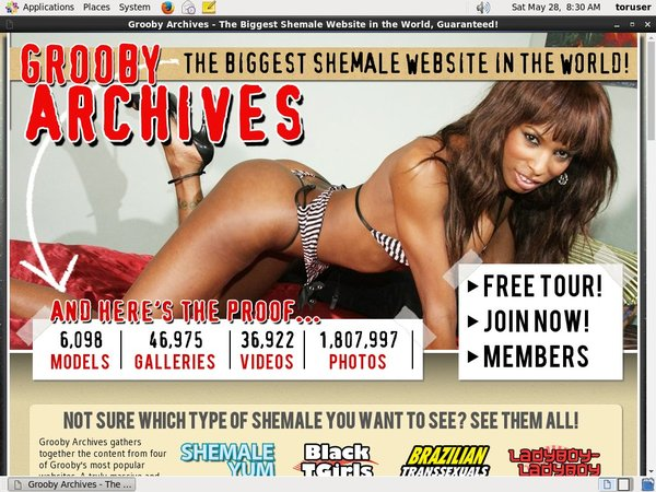 Special The Grooby Archives Discount